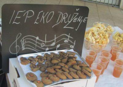 IEP-Eko-Druzenje-2014